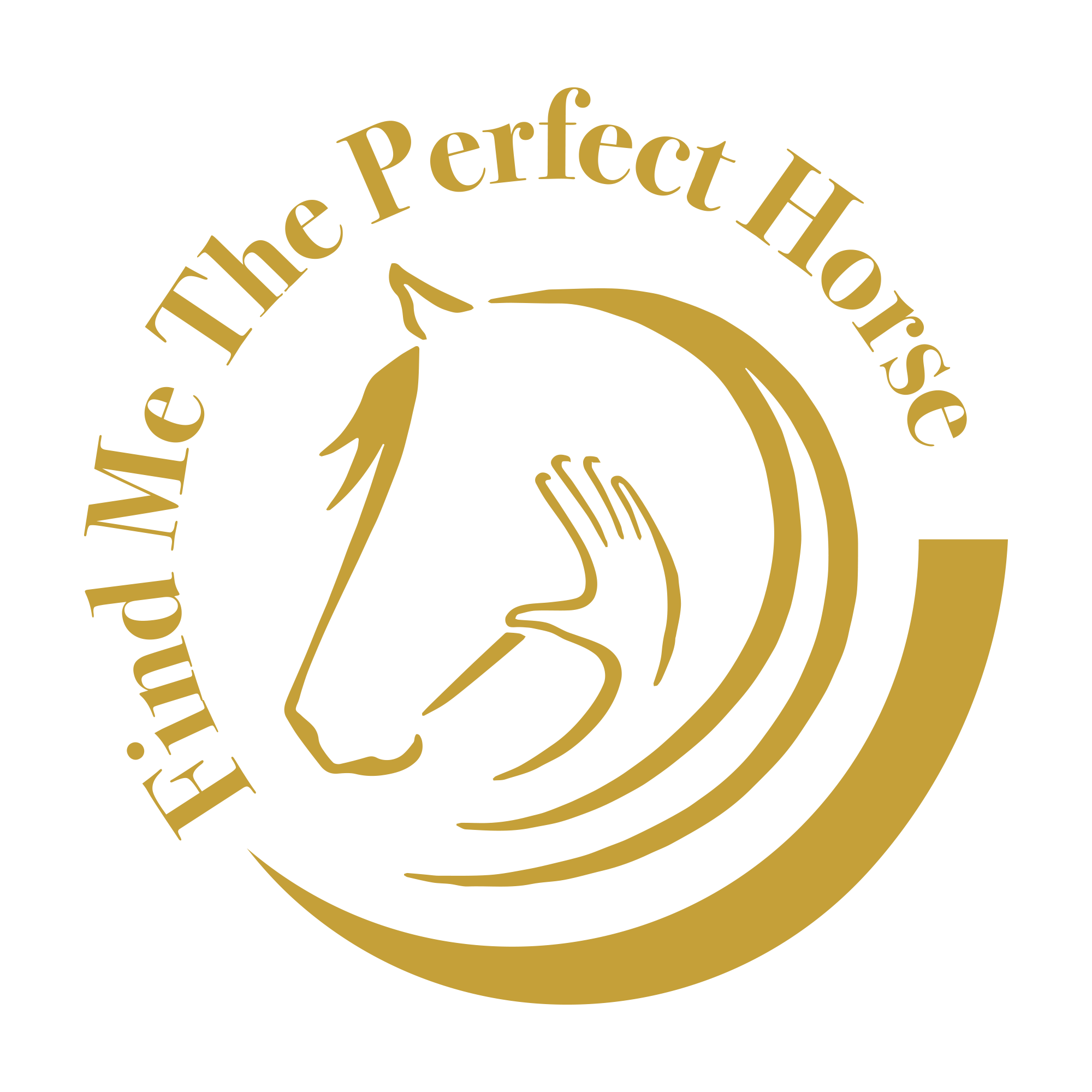 Find Me The Perfect Horse