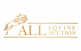 All Equine Auction Logo