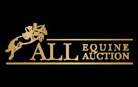 All Equine Auction Logo